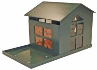 SQF1G - Bird Proof Squirrel Feeder - USA