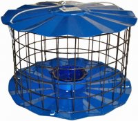 BBF1 - Meal Worm Feeder - USA